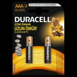 Duracell - Duracell Basic AAA Batteries (2-Pack)