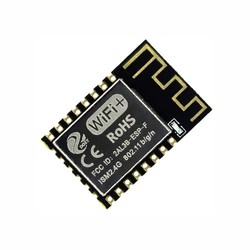 China - ESP-12F Wifi Modül