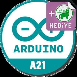 Rokodemi - Online Arduino Eğitimi