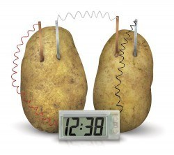 Potato Clock - Thumbnail