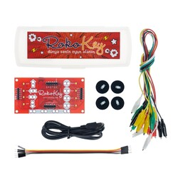 Rokodemi - Rokokey Robotic Development Board